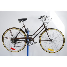 1971 Schwinn Suburban Ladies Bicycle