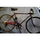 1965 Schwinn Collegiate 5 Speed Bicycle