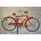 "1970 Raleigh Dunelt Sports 24"" Bike"