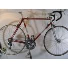 Viking Lambert Grand Prix Professional Road Bicycle