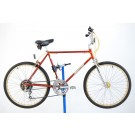 1982 Schwinn Sidewinder Mountain Bicycle