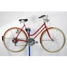 1979 Schwinn Suburban Bicycle