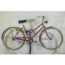 1964 Schwinn World Traveler Women's Bicycle