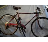 1965 Schwinn Collegiate 5 Speed Bicycle