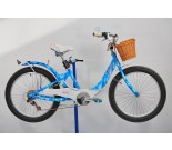 2007 Giant Areva Fashion Bicycle