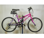 1990s Pacific Built Kids Bicycle