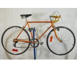 1965 Schwinn Varsity Road Bicycle
